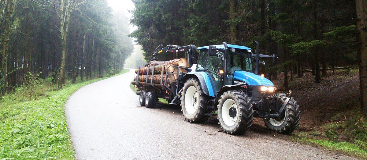 Forstarbeiten am besten vom Fachmann